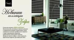 zebra-kletka-1